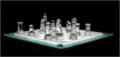 Check Mate by Steve White